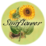 Visit our Sunflower page